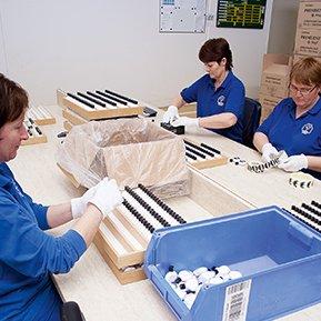 Verschließen, etikettieren und verpacken von Schneeberg